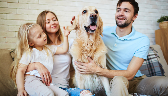 Pet Care Franchises: Turn Your Passion for Pets Into a Profitable Business
